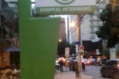 hospital-veterinario-618x1030